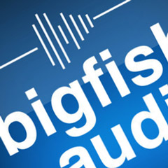 Big Fish Audio Distribution Partnership